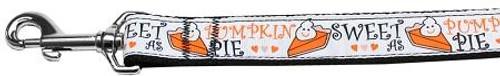 Pumpkin Pie Nylon Dog Leash 6 Foot