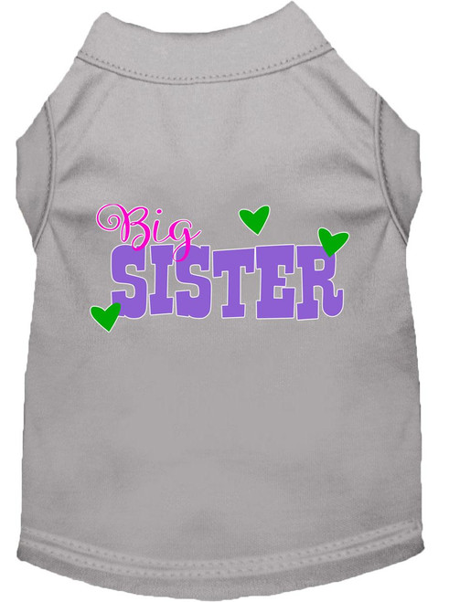 Big Sister Screen Print Dog Shirt Grey Xxxl