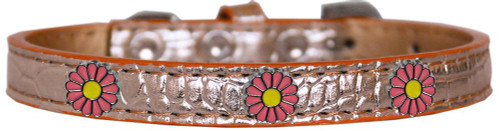 Pink Daisy Widget Croc Dog Collar Copper Size 20