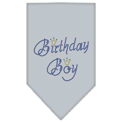 Birthday Boy Rhinestone Bandana Grey Large