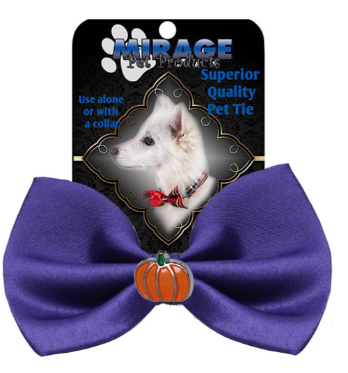 Pumpkin Widget Pet Bowtie Purple
