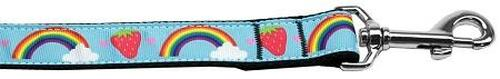Rainbows And Berries Nylon Dog Leash 4 Foot