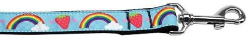 Rainbows And Berries Nylon Dog Leash 6 Foot