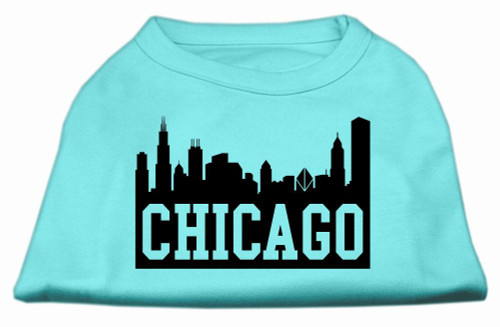Chicago Skyline Screen Print Shirt Aqua Lg (14)