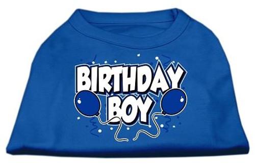 Birthday Boy Screen Print Shirts Blue Med (12)