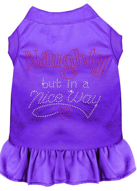 Rhinestone Naughty But In A Nice Way Dress Purple Xxxl (20)