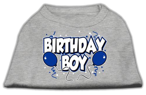 Birthday Boy Screen Print Shirts Grey Med (12) - 51-05 MDGY