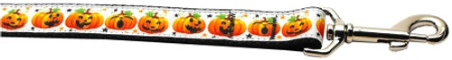 Pumpkin Parade Nylon Dog Leash 3/8 Inch Wide 6ft Long