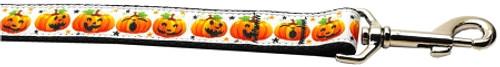 Pumpkin Parade Nylon Dog Leash 3/8 Inch Wide 4ft Long
