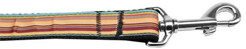 Autumn Stripes Nylon Dog Leash 3/8 Inch Wide 6ft Long