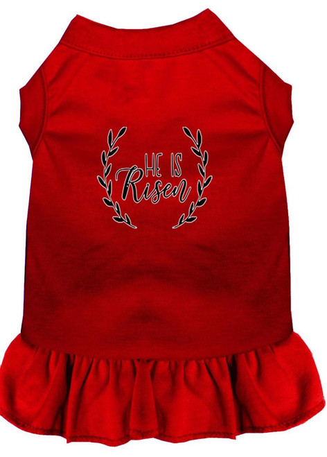 He Is Risen Screen Print Dog Dress Red 4x (22)
