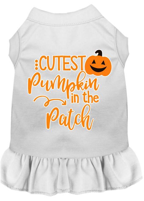 Cutest Pumpkin In The Patch Screen Print Dog Dress White Xxxl