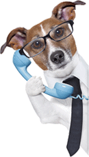 wellpetdispensary customer service
