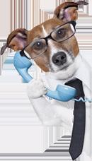 wellpetdispensary customer service