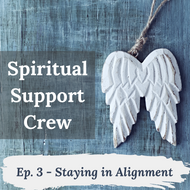 Podcast Episode 3 - Staying in Alignment
