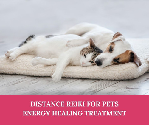 Distance Reiki Treatment for Pets & Small Animals