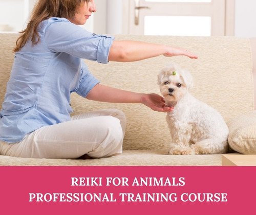 Reiki for Animals - add on training course suitable for all Reiki students - held live online via Zoom. Suitable for students worldwide.
