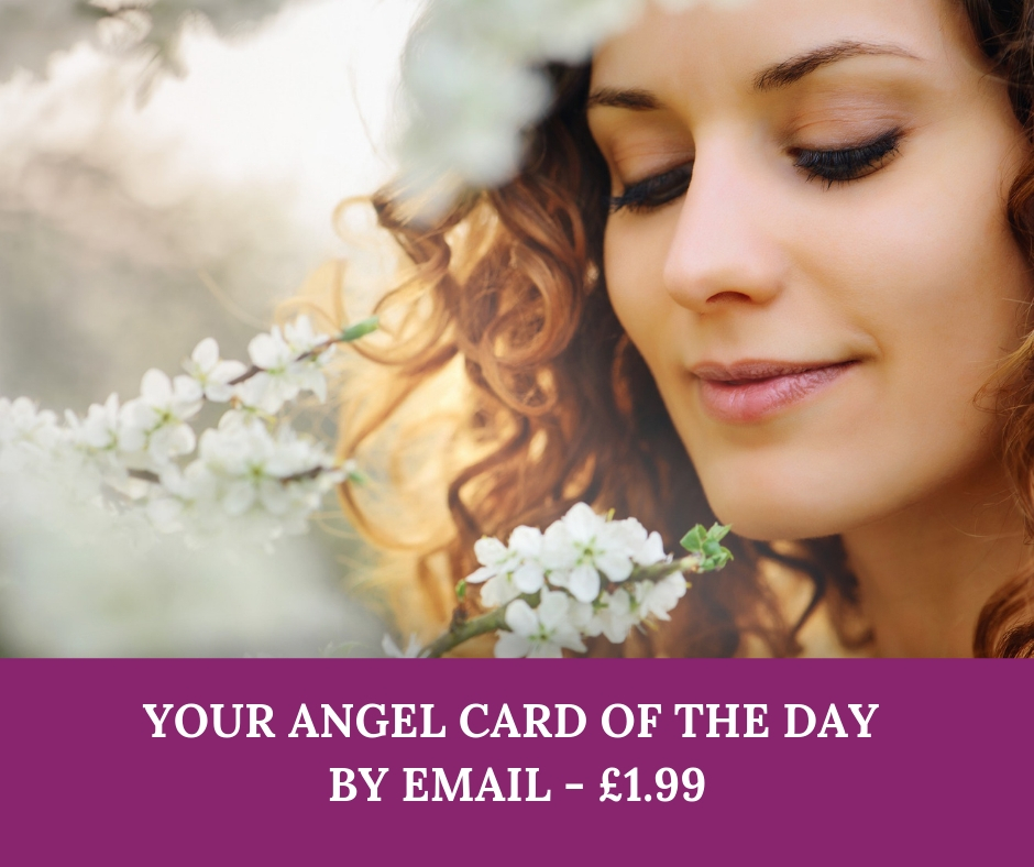angel-card-of-the-day-1-99.jpg