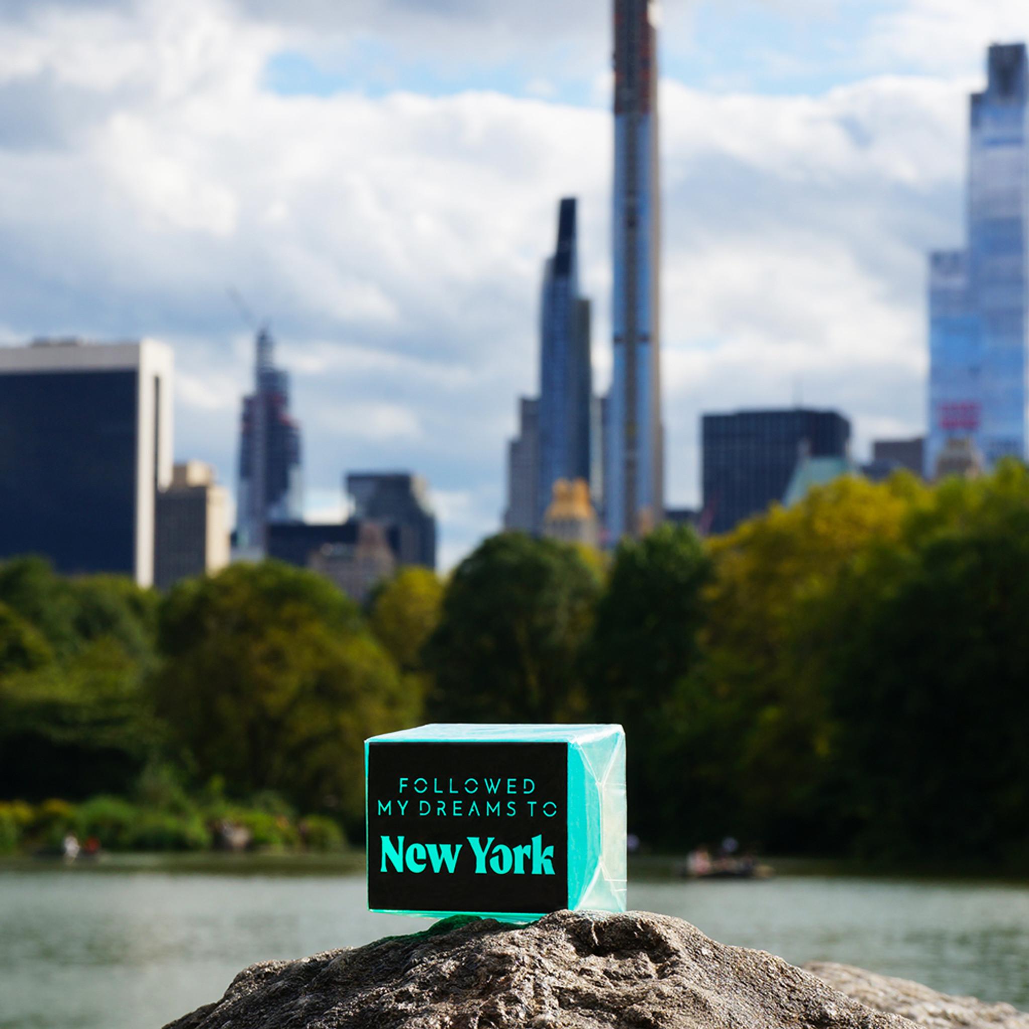 followed my dreams to New York
