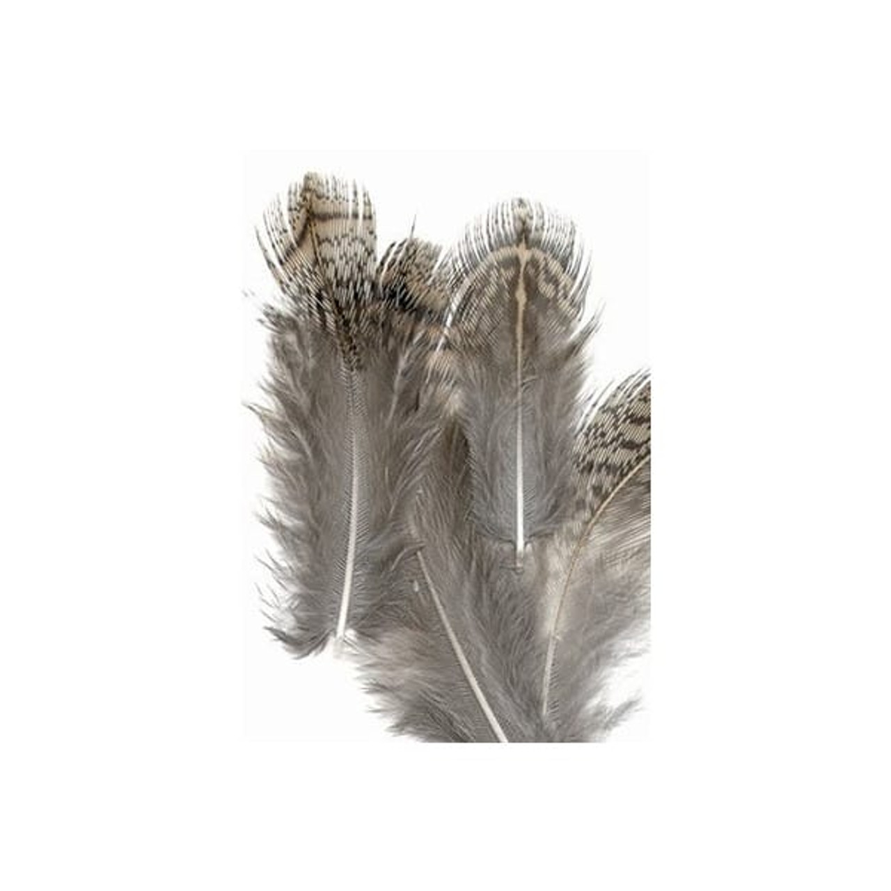 2 colours Mixed English Partridge Hackles for Fly Tying