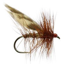 Brown Flag Sedge