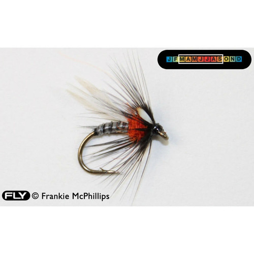 Adult Duck Fly JC