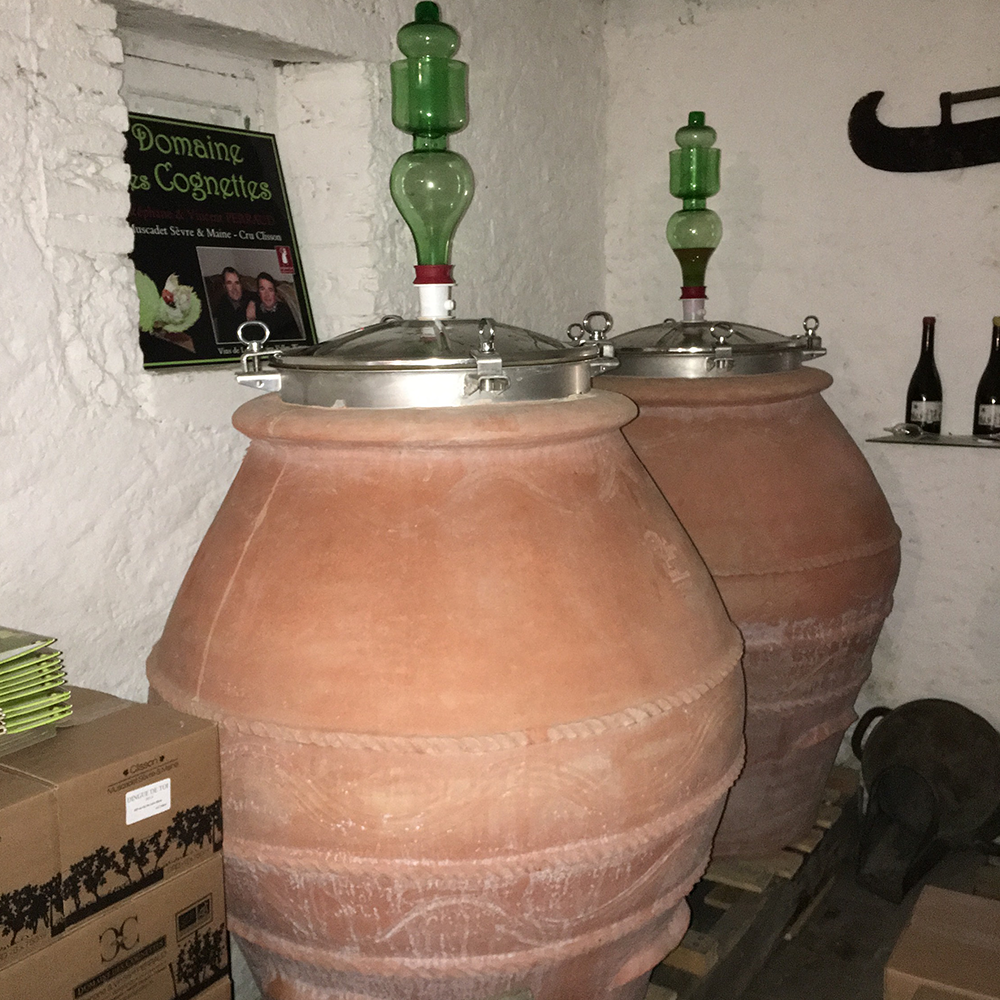 Retasting the Amphora Aged Wines of Domaine des Cognettes
