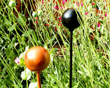metal ball head stake in garden black, copper