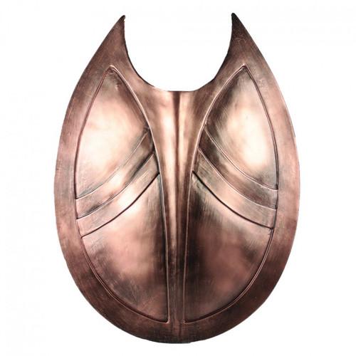 "21.5"" x 18"" Shield"