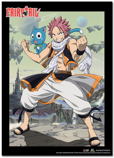 Fairy Tail S3 - Natsu And Happy Success Wall Scroll