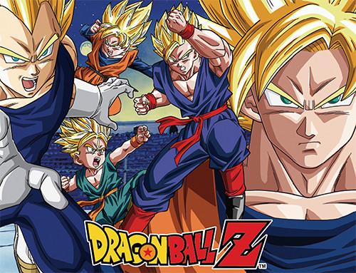Dragon Ball Z World Tournament Saga Throw Blanket