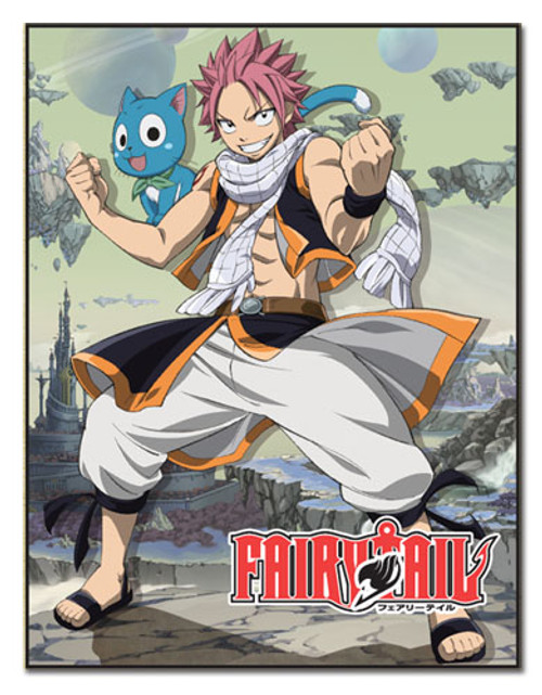Fairy Tail Natsu, and Happy Ready to Fight Throw Blanket