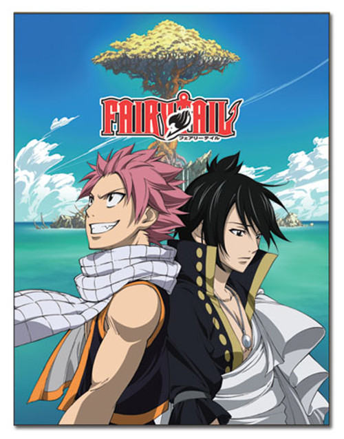 Anime Merchandise & Collectibles - Blanket - Fairy Tail