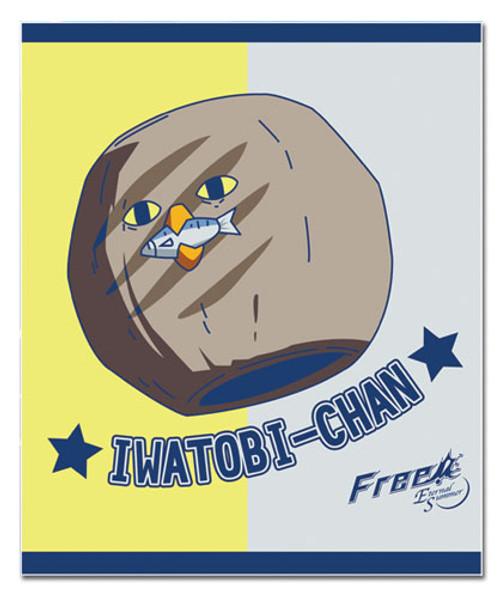Free! Iwatobi With A Mackerel Throw Blanket