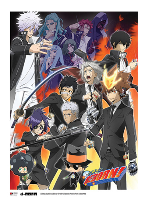 Reborn Choice Arc Wall Scroll