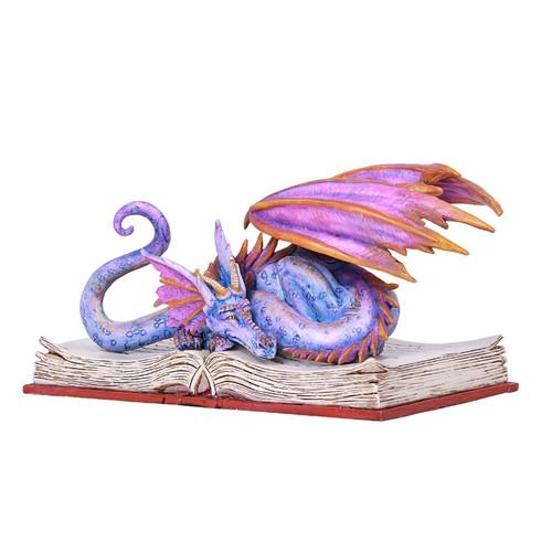 Purple Dragon Sleeping On Book