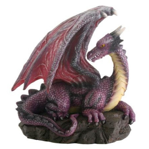 Purple Dragon On Resting On Rocks