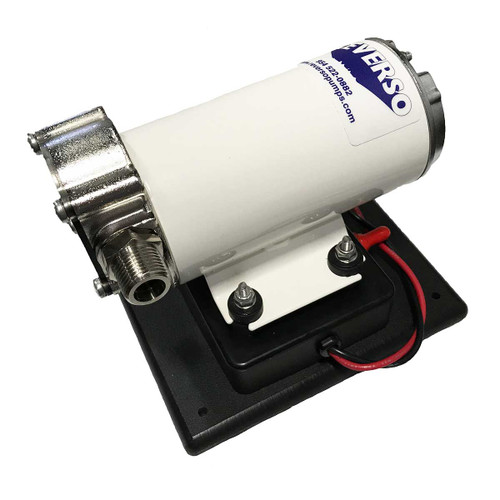 602 Gear Pump with Base and Reversing Switch - 12