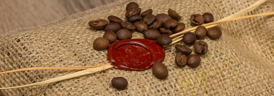 Your Ultimate Guide on Brazilian Coffee