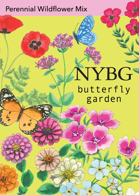 NYBG Seeds - Butterfly Garden Seed Mix