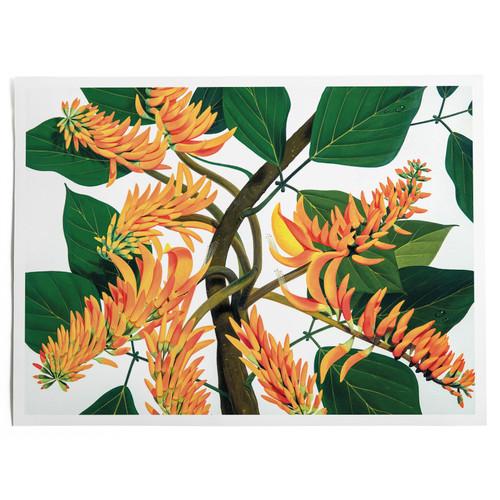 Flame Tree Print