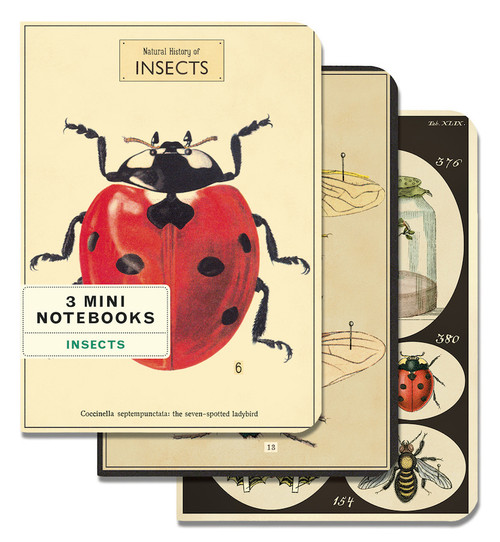 Insect Mini Notebook Set