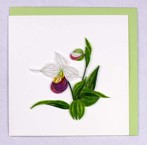 Pink & White Ladyslipper Card