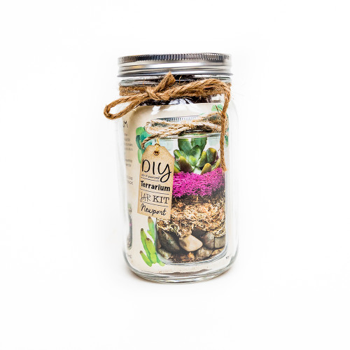 SuperMoss Newport Terrarium Jar Kit