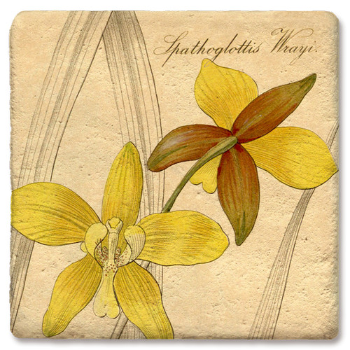 Yellow Dendrobium Orchid Coaster