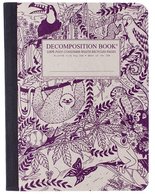 Rainforest Decomposition Book