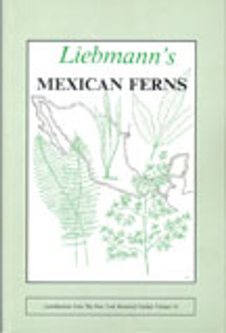 Liebmann's Mexican Ferns. Contributions (19)