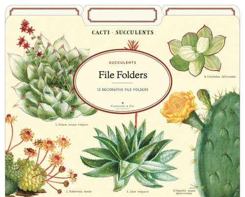 Cacti & Succulents File Folders