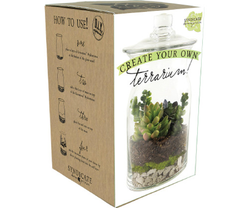 Do It Yourself Terrarium Kit