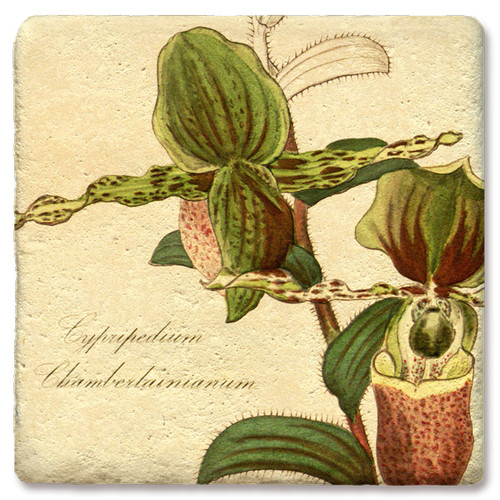 Green Lady Slipper Orchid Marble Coaster